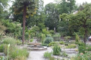 Botanical garden Padua, Ann Dijkstra, 2014