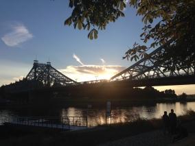 Blue Wonder, Dresden
