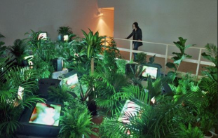 Nam June Paik, TV Garden, 1974