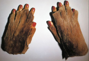 Meret Oppenheim, Fur gloves with wooden fingers, 1936