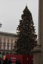 Christmas tree Duomo
